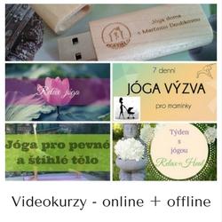 kurzy-na-www-jogadoma-cz
